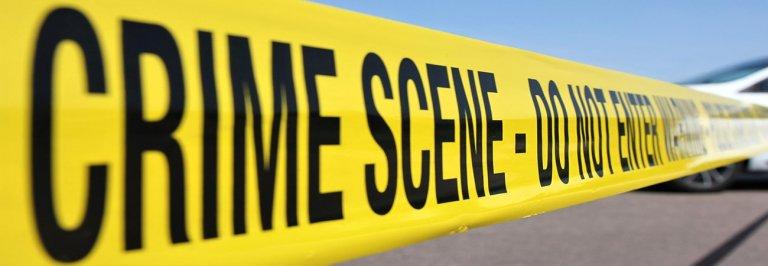 violent-crimes-felonies1-768x266.jpg